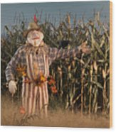 Scarecrow In A Corn Field Wood Print