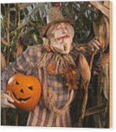 Scarecrow With A Carved Pumpkin  In A Corn Field Wood Print