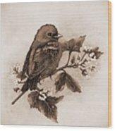 Scarlet Tanager - Tint Wood Print