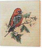 Scarlet Tanager - Vintage Wood Print