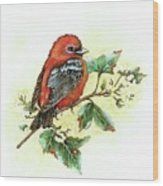 Scarlet Tanager - Summer Season Wood Print
