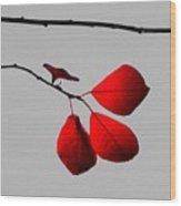 Scarlet Triad Wood Print