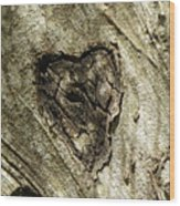 Love Endures Wood Print