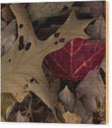 Scary Leaves Wood Print