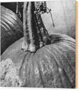 Scary Stem Pumpkin Wood Print