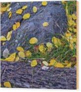 Scattered Aspen Leaves Wood Print
