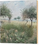Scene From Rhine Wood Print