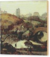 Scene In Central Park Wood Print