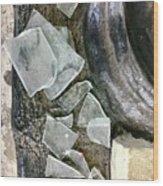 Scene In St. Augustine  Wood Print
