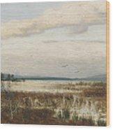 Scene Of Chiemsee, Moor Landscape Wood Print