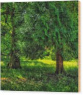 Scenes From An English Garden Wood Print