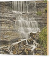 Scenic Alger Falls  Wood Print