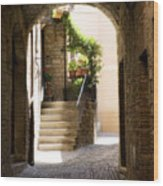 Scenic Archway Wood Print