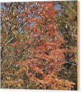 Scenic Autumn  Wood Print