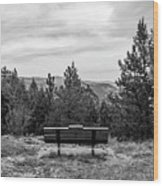 Scenic Bench In Black And White Wood Print