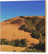 Scenic California Wood Print