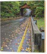 Scenic Drive 1 Wood Print
