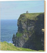 Scenic Lush Green Grass And Sea Cliffs Of Ireland Wood Print