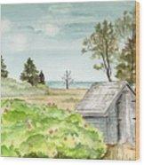 Scenic Maine   Wood Print