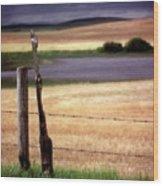 Scenic Saskatchewan Landscape Wood Print