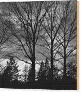 Scenic State Capital Wood Print
