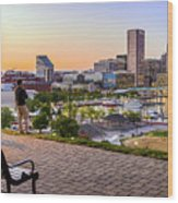 Scenic View From Federal Hill Wood Print