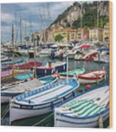 Scenic View Of Castle Hill And Marina In Nice, France Wood Print