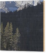 Scenic View Of Mount Abbot 13701 Ft Wood Print