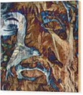 Schizophrenia Wood Print