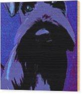 Schnauzer Puppy Poster Wood Print