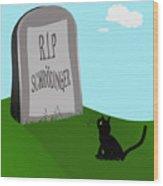 Schoedingers Cat 1 - Schroedinger 0 Wood Print