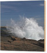 Schoodic Point In Acadia National Park Wood Print