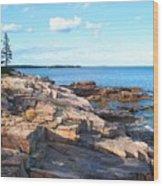 Schoodic Shoreline  Wood Print