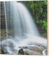 Schoolhouse Falls In Nantahala National Forest Panorama Wood Print