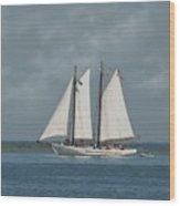 Schooner A. J. Meerwald 1 Wood Print by Joyce StJames