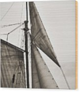 Schooner Pride Tall Ship Yankee Sail Charleston Sc Wood Print