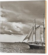 Schooner Pride Tallship Charleston Sc Wood Print by Dustin K Ryan