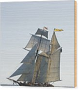 Schooner Races 2009 Wood Print