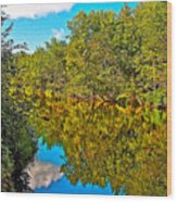 Schroon River Reflection In The Adirondacks-new York Wood Print