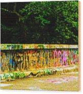 Schuylkill Graffiti Wood Print