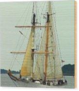 Vessel Wood Print