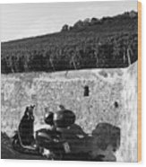 Scooter In Wurzburg Wood Print