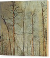Scorched Forest Wood Print