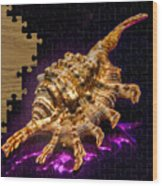Scorpion Shell Puzzle Wood Print