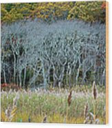 Scorton Creek Treeline Wood Print