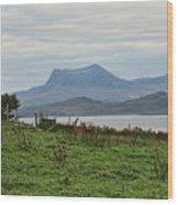 Scotland Landscape IIi Wood Print