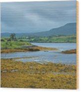 Scottish Cove Wood Print