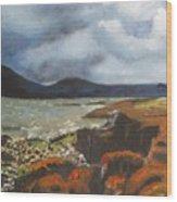 Scottish Lowlands Wood Print