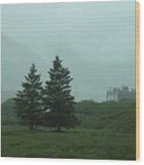 Scottland Wood Print