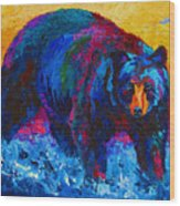 Scouting For Fish - Black Bear Wood Print by Marion Rose